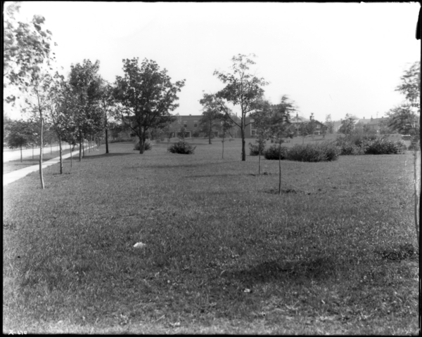 East Side Park, Looking South from N.E. Corner