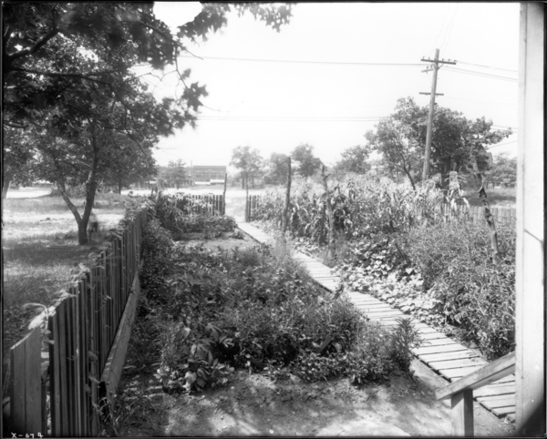 Garden, 752 Connecticut Street, Rear