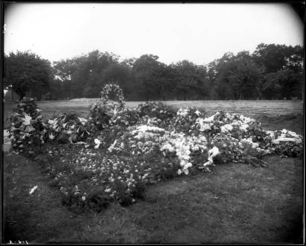 Calvary Cemetery, East Gary. View Looking N.W. Toward Flowers on Mrs. J.J. Hennessey's Grave
