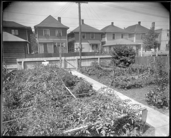 City, Garden at 545 Madison Street