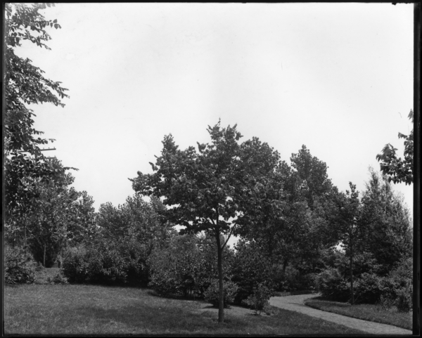 View of 15th Ave. Park, Tolleston