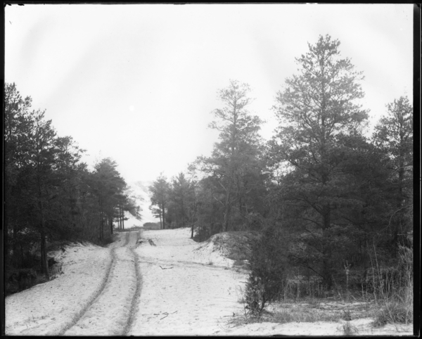 Driveway to Marquette Park